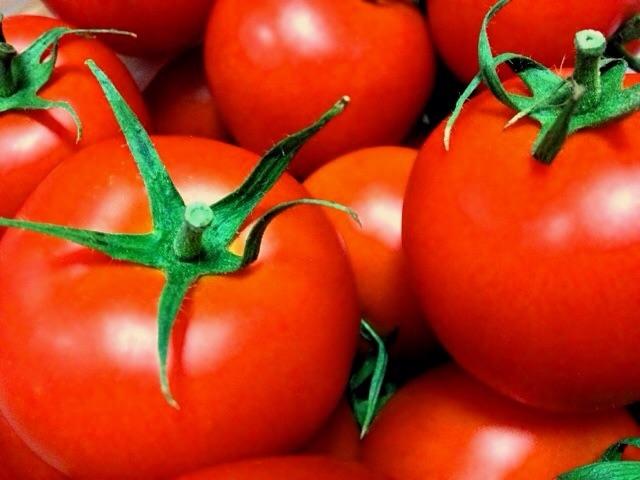 花粉症に効く食べ物トマト